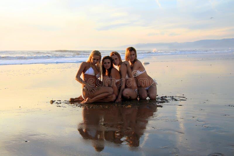 Vier mooie bikinimodellen stock foto