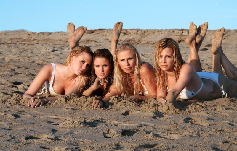 Vier mooie bikinimodellen royalty-vrije stock afbeelding