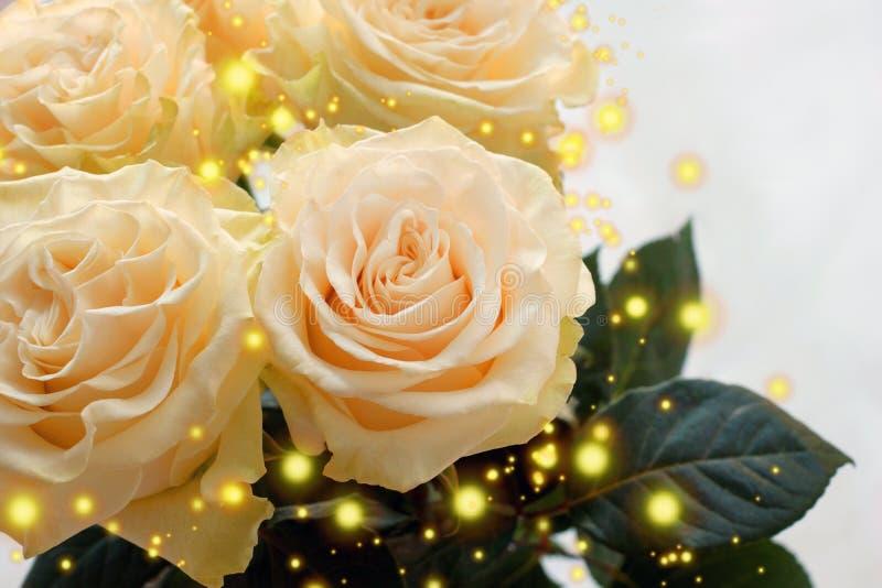 Vier mooie romige rozen in een boeketclose-up Prachtige gelukwensen op de vakantie royalty-vrije stock afbeeldingen