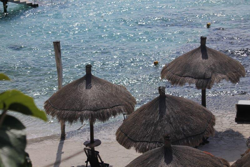 Vier Palapas op het strand in Isla Mujeres royalty-vrije stock afbeeldingen
