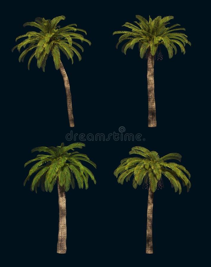 Vier Palmen 3d CG lizenzfreie abbildung