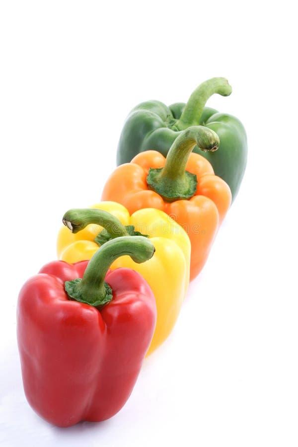 Vier Paprika auf weißem Hintergrund lizenzfreie stockfotos