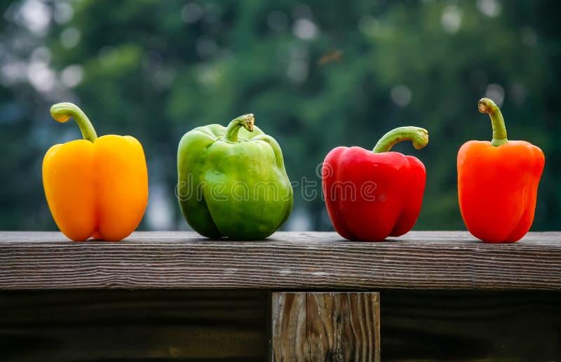 Vier peper op richel royalty-vrije stock fotografie