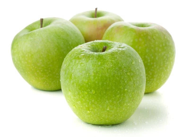 Vier reife grüne Äpfel lizenzfreies stockbild
