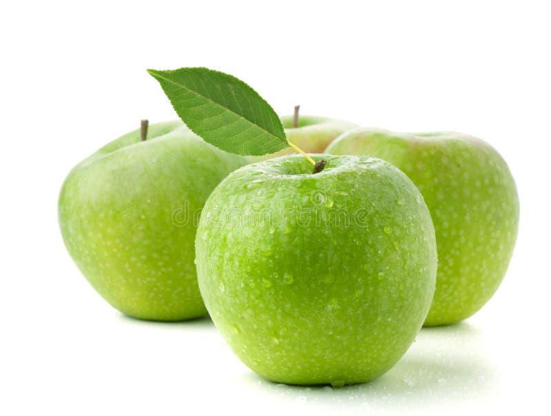 Vier reife grüne Äpfel lizenzfreies stockfoto