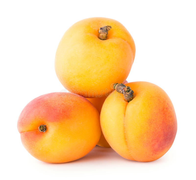 Vier rijpe abrikozen stock fotografie