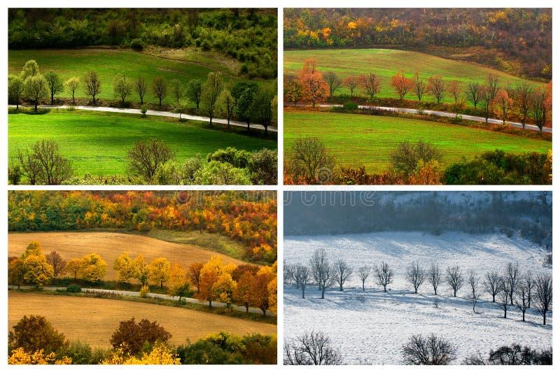 Vier seizoenen stock afbeelding