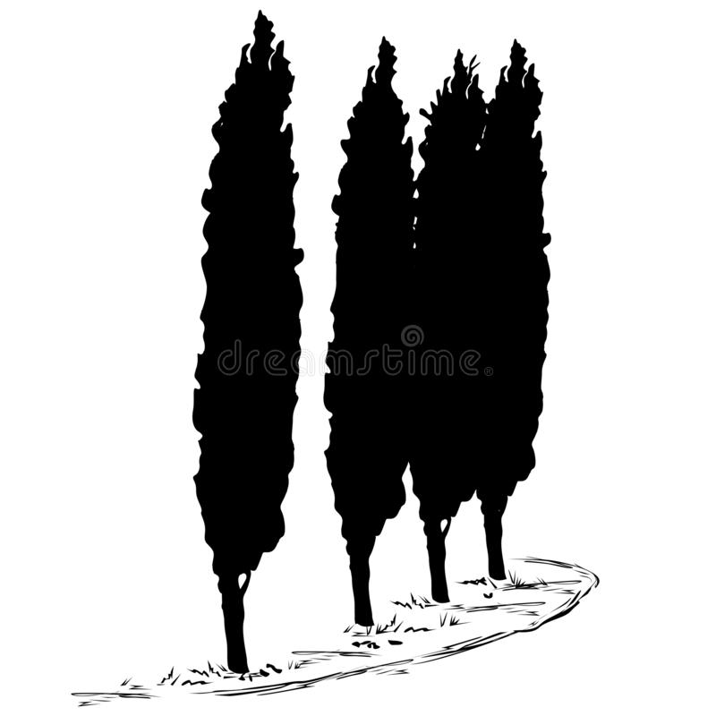 Vier silhouetten van een boom van een cipres en een voetpad langs hen stock illustratie