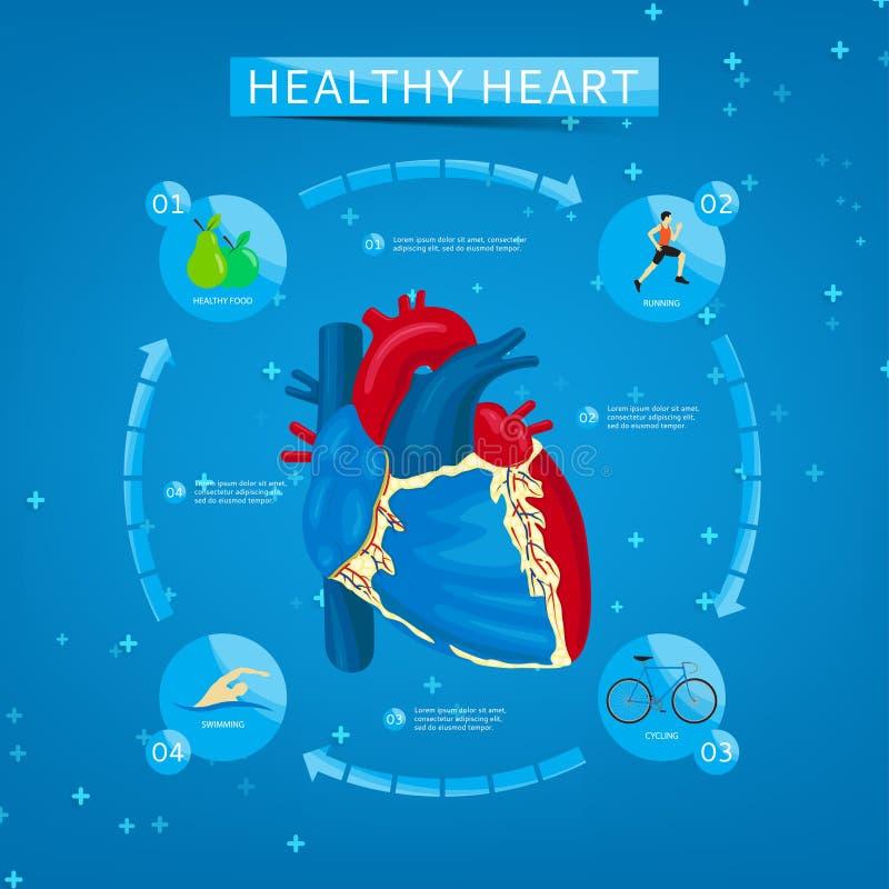 Vier stappen aan gezond hart royalty-vrije illustratie