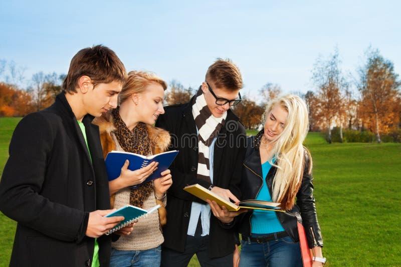 Vier studenten bespreken onderworpen in het park stock fotografie