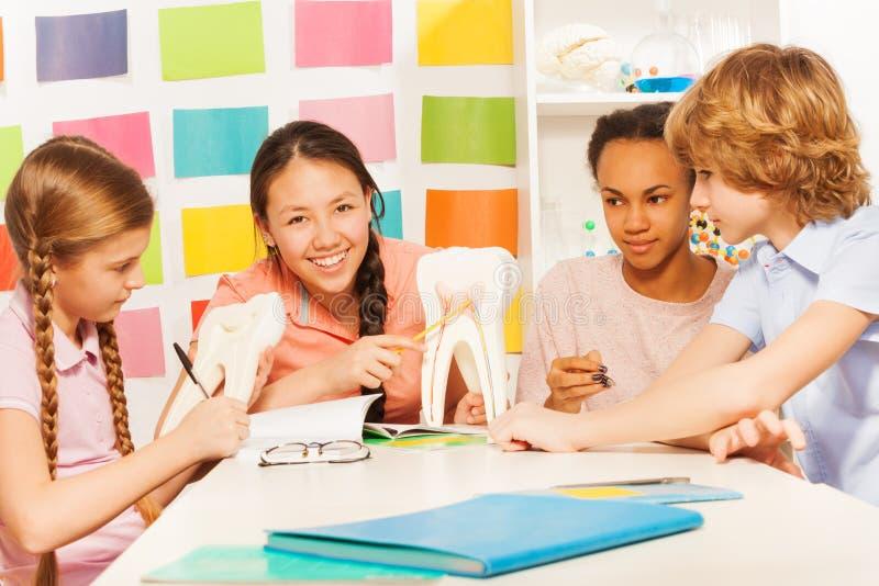 Vier tieners die de anatomie bestuderen bij klaslokaal stock foto's