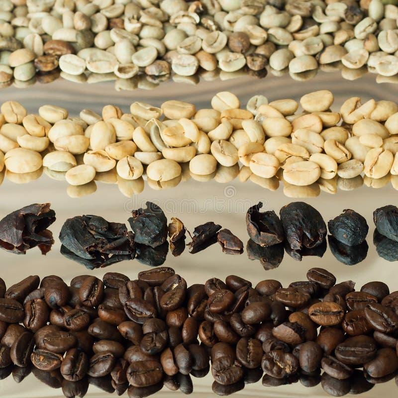 Vier verscheidenhedenkoffie stock afbeelding