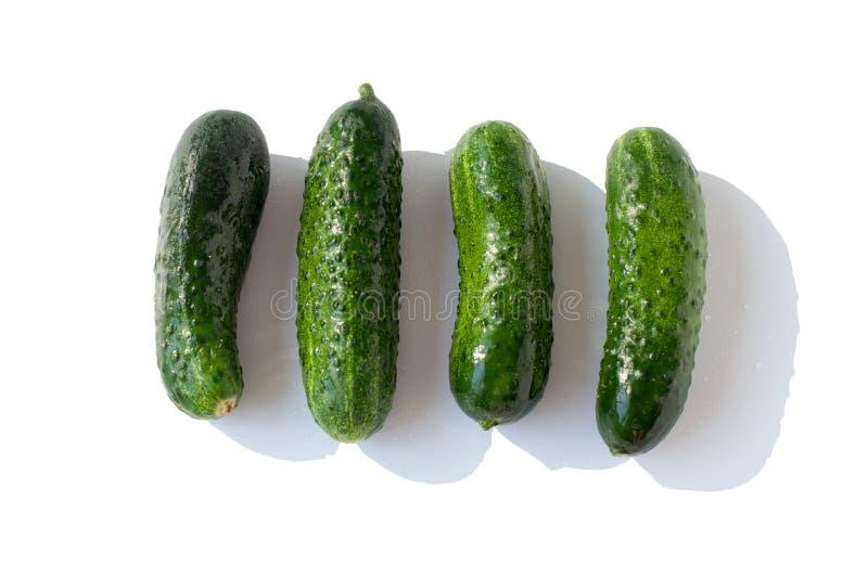 Vier verse groene Komkommers in waterdalingen op witte achtergrond Geïsoleerde hoogste menings dichte omhooggaand stock foto's
