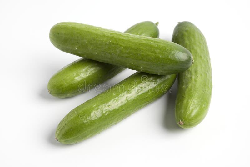Vier verse kleine komkommers stock foto's
