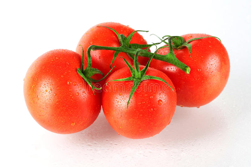 Vier verse tomaten stock fotografie