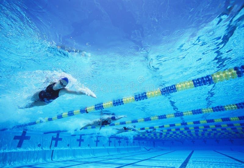 Vier vrouwelijke professionele deelnemers die in pool rennen royalty-vrije stock fotografie
