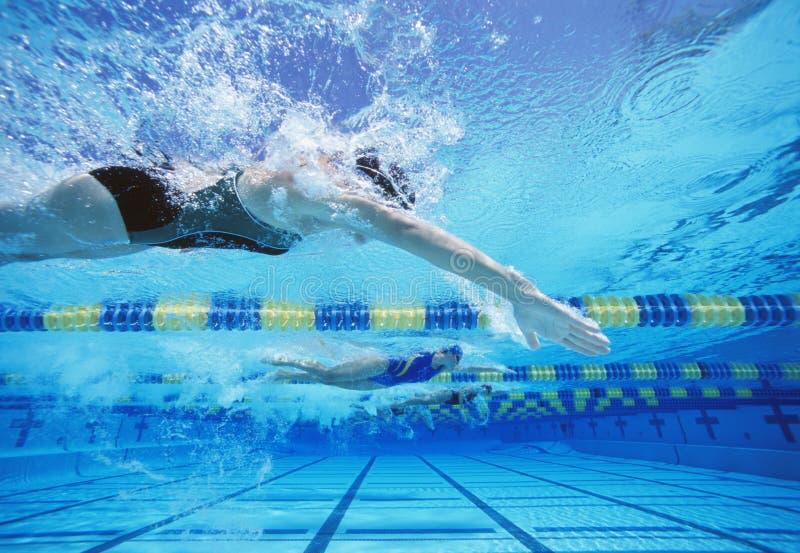 Vier vrouwelijke zwemmers die samen in zwembad rennen royalty-vrije stock afbeeldingen