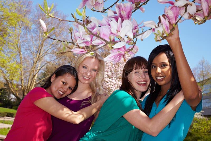 Vier vrouwen onder een Magnolia stock fotografie