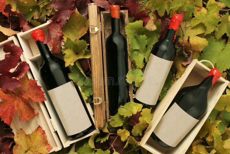 Vier Weingeschenkkästen stockfoto