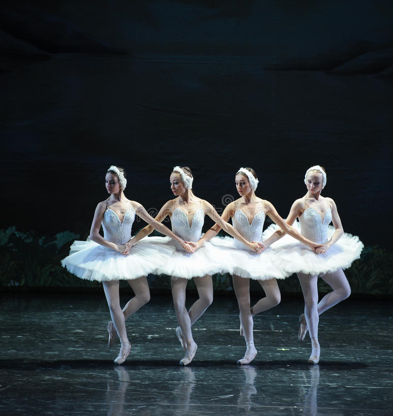 Vier weinig het zwaan-Zwaan oever van het meer-Ballet Zwaanmeer stock foto's