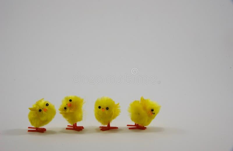 Vier weinig Pasen-groetenkaart tweede van flufflykuikens royalty-vrije stock foto's