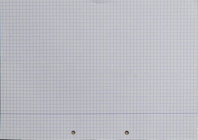 Vierkant gevoerde document Geperforeerde Textuur royalty-vrije stock foto