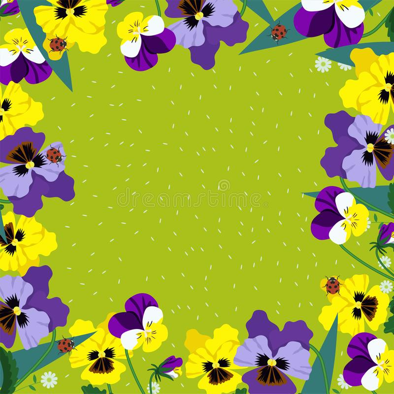 Vierkant kader van pansies op een groene achtergrond Vector grafiek royalty-vrije illustratie