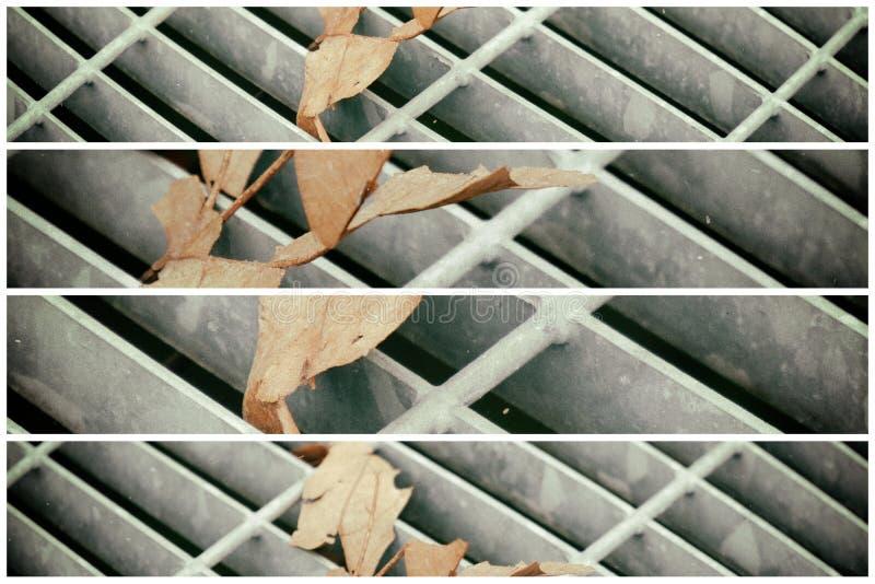 Vierkant metaalbroedsel in stedelijke bestrating, de dekking van het rioolmangat met binnen het merken van lijnen en blad royalty-vrije stock fotografie
