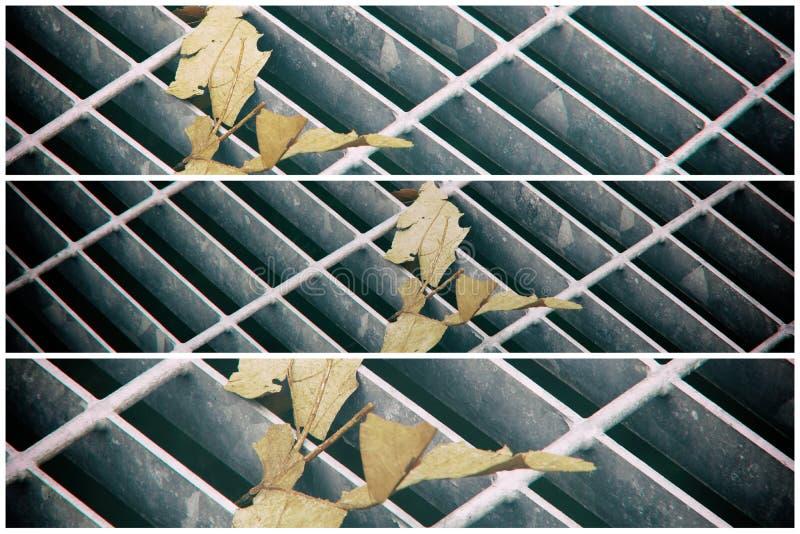 Vierkant metaalbroedsel in stedelijke bestrating, de dekking van het rioolmangat met binnen het merken van lijnen en blad stock afbeelding