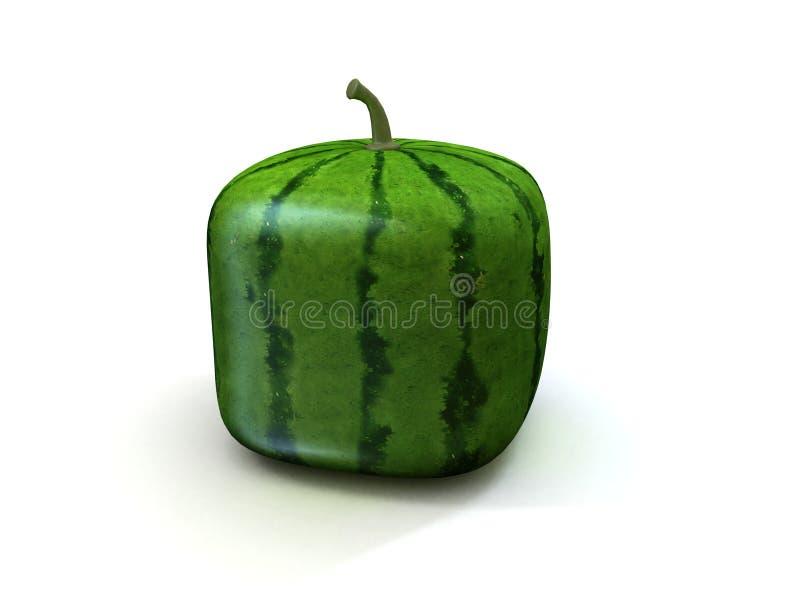 Vierkante meloen stock illustratie