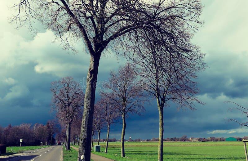 VIERSEN TYSKLAND - mörk himmel med hagel uthärda moln över landsvägen och kala träd som meddelar åskastormen arkivfoton