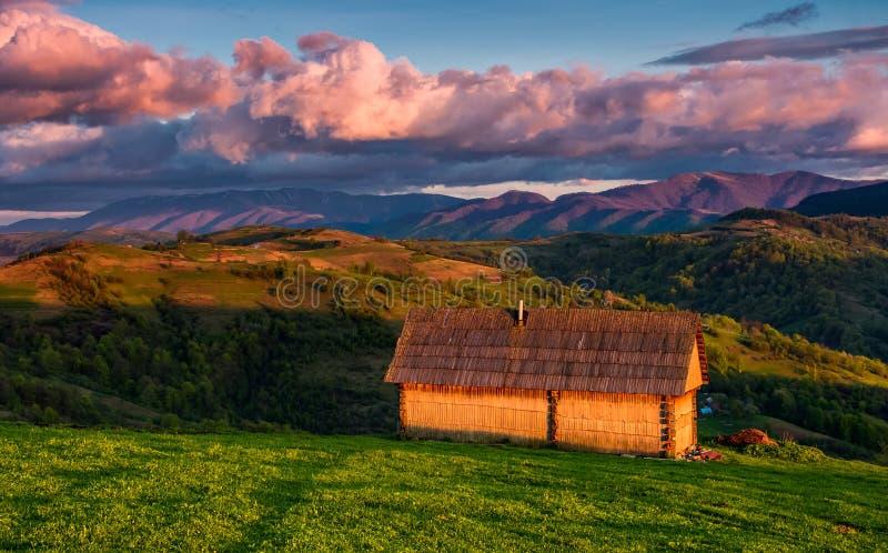 Vierta en la ladera herbosa en luz roja de la tarde imagen de archivo libre de regalías