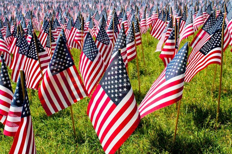 Viertel von Juli-Feld von Flaggen lizenzfreie stockbilder