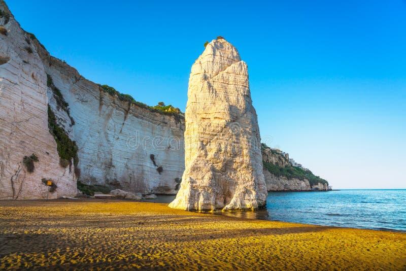 Vieste and Pizzomunno rock beach, Gargano, Apulia, Italy. Vieste and Pizzomunno rock beach shoreline, Gargano peninsula, Apulia, southern Italy, Europe stock image