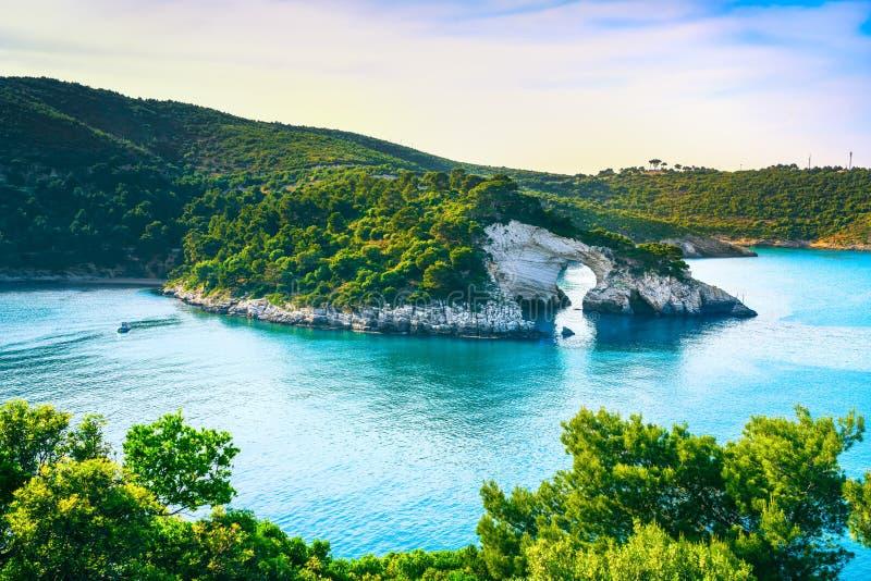 Vieste, San Felice arch rock bay, Gargano, Apulia, Italy. Vieste, San Felice arch rock bay, Gargano peninsula, Apulia, southern Italy, Europe stock photos