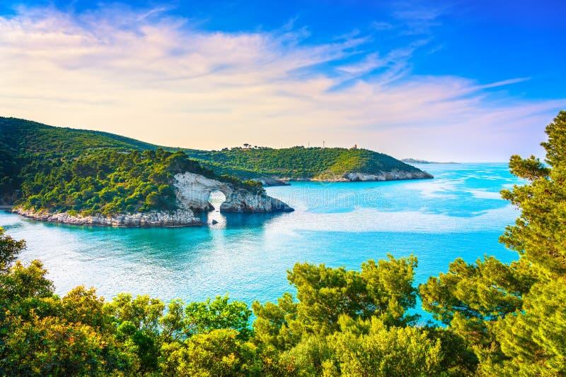 Vieste, San Felice arch rock bay, Gargano, Apulia, Italy. Vieste, San Felice arch rock bay, Gargano peninsula, Apulia, southern Italy, Europe stock photography