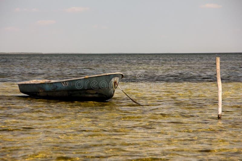 viet för nam för strandfartygdanang fiske royaltyfri fotografi