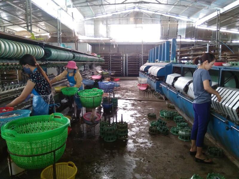 Vietnã, Dalat-7 de dezembro de 2019 Trabalhadores da fábrica de seda no Vietname imagens de stock royalty free