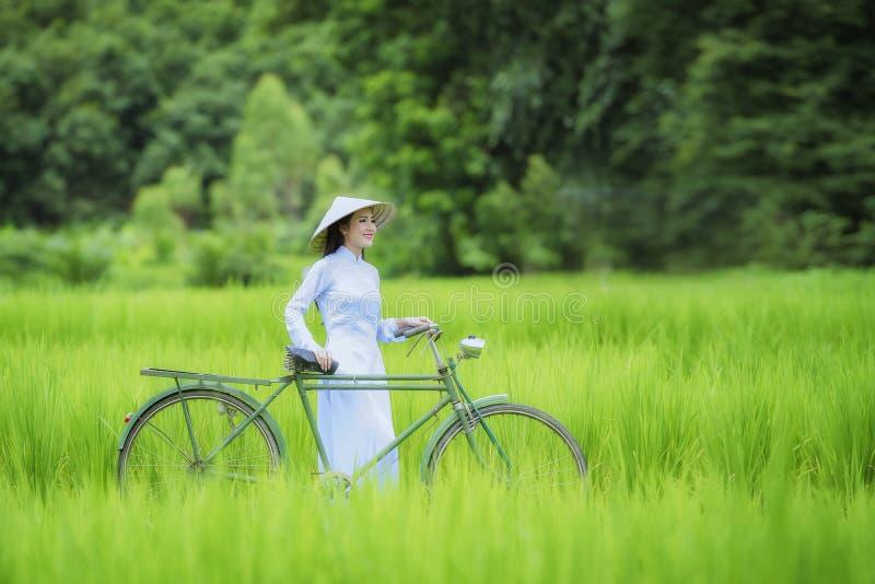 vietnam foto de stock royalty free