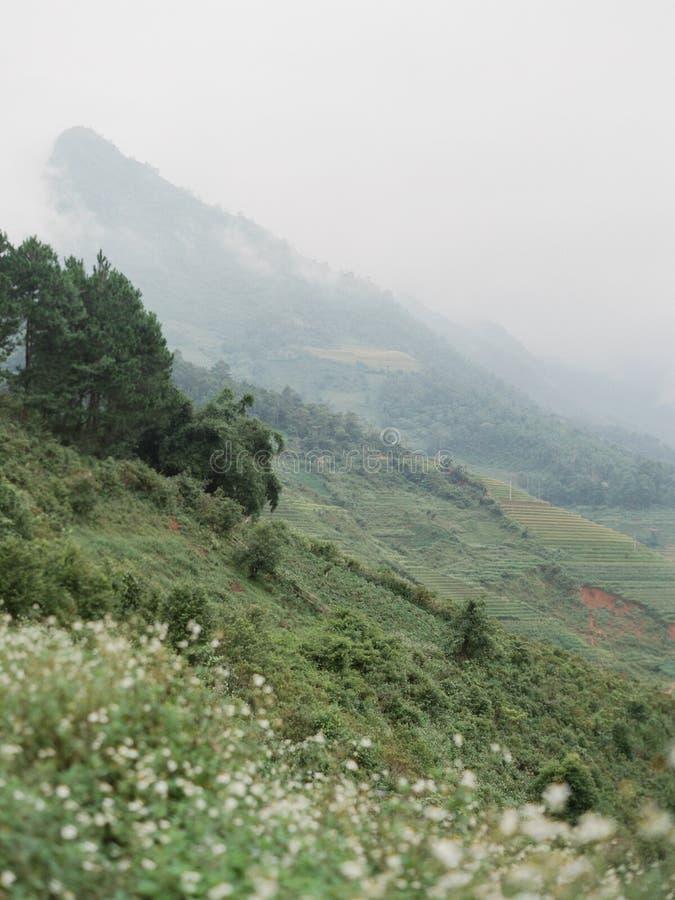 Vietnam foto de archivo libre de regalías
