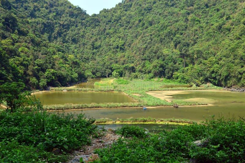 Vietnam - bahía larga de la ha - campo de Cat Ba Island - de Viet Hai imagen de archivo libre de regalías