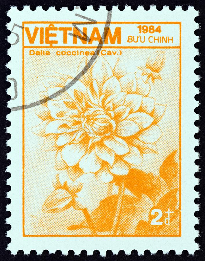 VIETNAM - CIRCA 1984: A stamp printed in Vietnam from the `Plants and Animals` issue shows Dahlia Dahlia coccinea, circa 1984. VIETNAM - CIRCA 1984: A stamp royalty free stock image