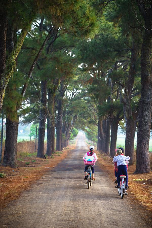 Vietnam countryside landscape with children cycling to school on soild road along lines of tree. stock photography