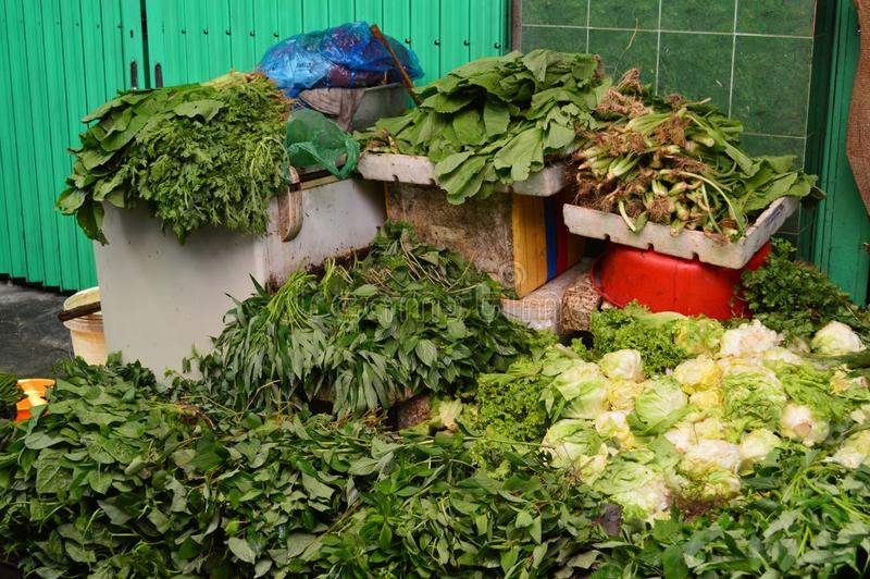 Vietnam - Ho chi Minh City - stånd royaltyfri bild