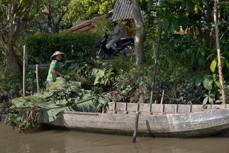 Vietnam Mekong delta som svävar marknaden arkivbilder