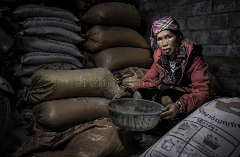 Vietnam modell fotografering för bildbyråer