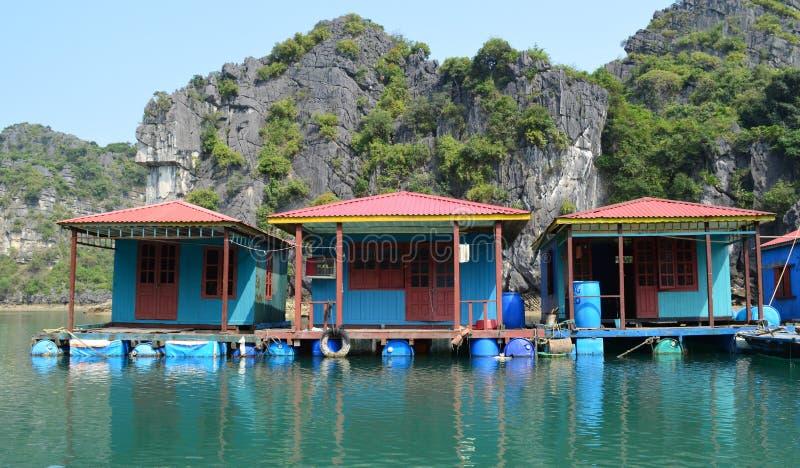Vietnam - mummel skälla länge - som är nära upp av färgglade blåa trähus på att sväva byn av Vung Vieng royaltyfri foto