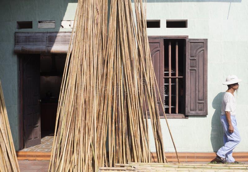 Vietnam, Rode Rivierdelta Vietnamees Mens en Bamboe stock foto