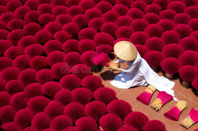 Vietnam`s incense village prepares for New Year celebrations, Incense sticks drying outdoor with Vietnamese woman wearing conical stock photo
