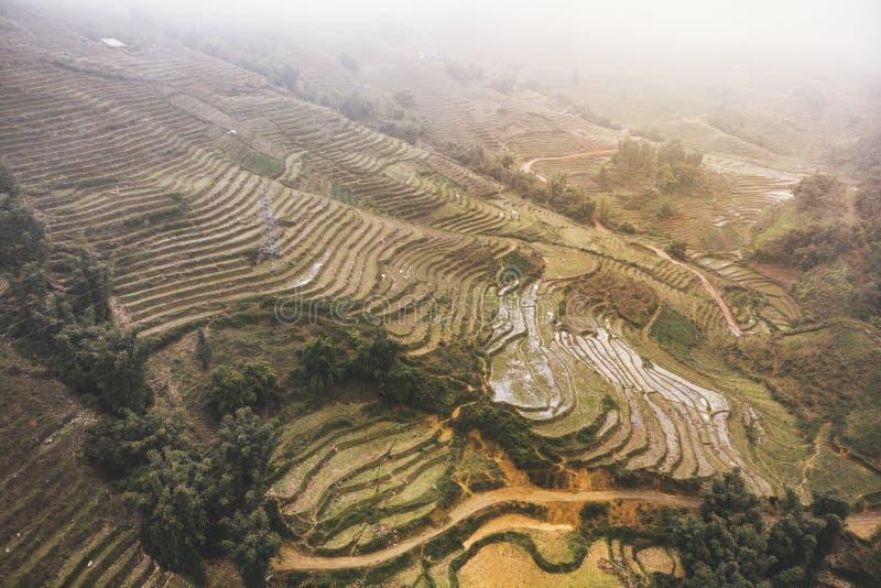 Vietnam Sa-PA, risf?lt i dimma arkivfoto
